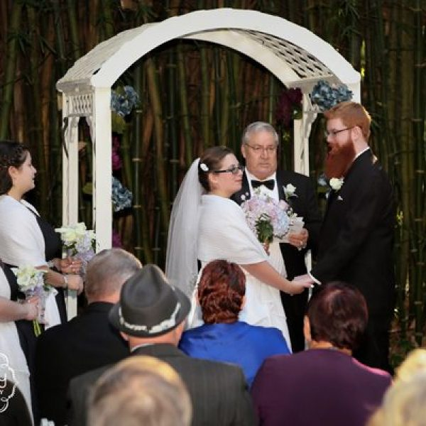 wedding arch at kanapaha botanical gardens