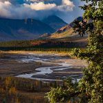 Teklanika River at Denali National Park